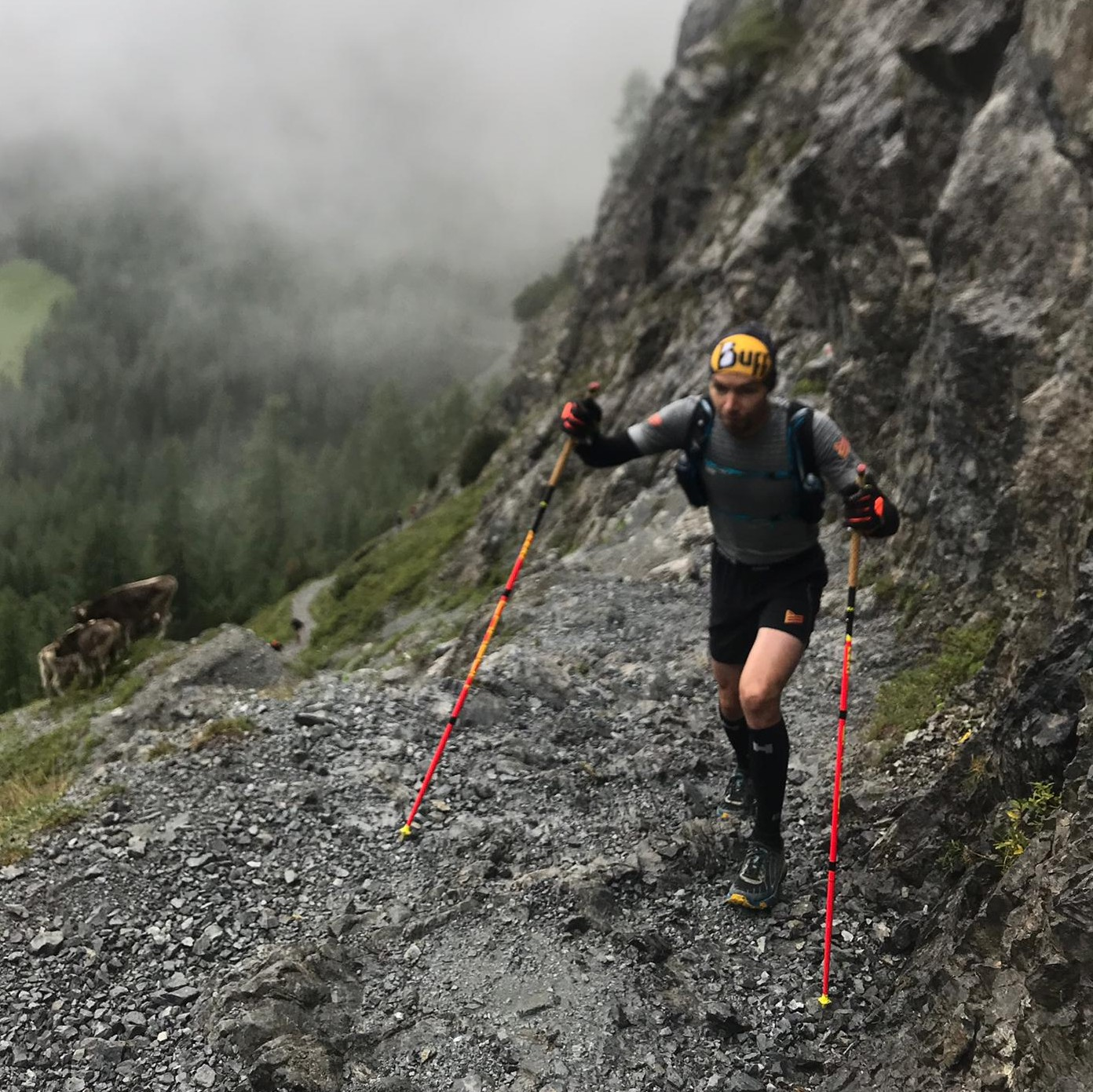 team_runners_lab_transalpine_run_2019_leki_loopstokken_bergen